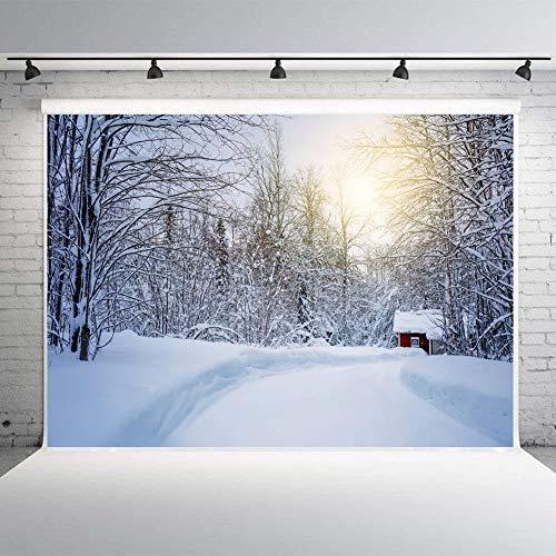 m Freien Schneeszene Straße Wald Rot Schneehaus Hintergrund Weihnachten Weiße Schneeflocke Erwachsene Fotografie Hintergrund Dekoration Urlaub Party Neugeborenes ()