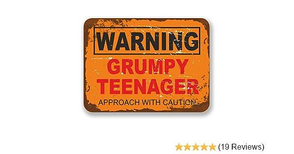 10cm Wide x 7.5cm Tall 2 x 10cm Grumpy Teenager Warning Sign Vinyl Sticker Laptop Boys Joke Gift #6561