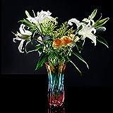 C&S Blumenvase Mediterranen Stil Bunte Verdickung Wohnzimmer Blumenarrangements Wasserkultur Bambus Lilien Vasen