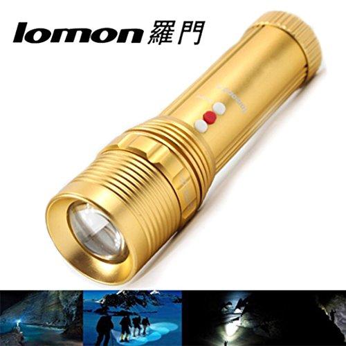 SOMESUN LED Tragbare USB Solar Wiederaufladbare Laterne Outdoor Camping Wandern Lampe Licht (Wald-licht-timer)