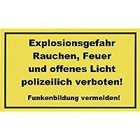 Schild Alu Propangas 200x300mm Feuer und Rauchen polizeilich verboten