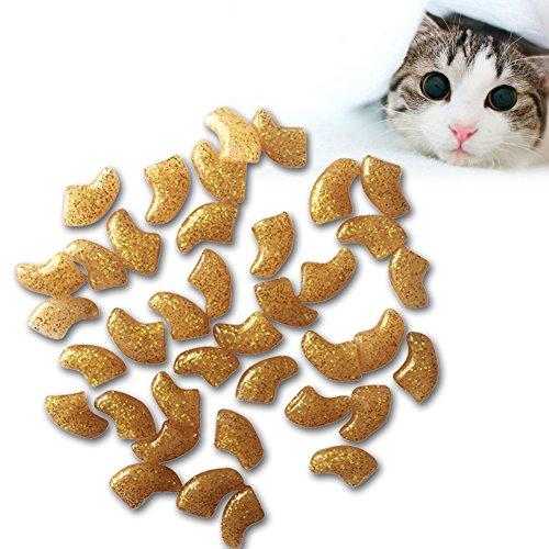 PanDaDa 20 PCS weiche Nagel-Kappen-Nagel-Abdeckungen Klauen-Kappen für Katzen-Haustier-Kätzchen-Hund mit den Kleber-Klauen-Steuerpfoten weg