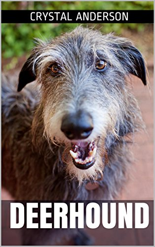 Deerhound: How to Own, Train and Care for Your Deerhound (English Edition)