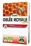Biotechnie Gelée Royale Bio 1500 mg 20 Ampoules