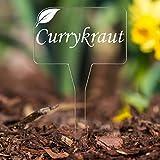 Bütic GmbH Acrylglas Kräuterschilder Eckig V2 farblos - Pflanzschilder, Gartenstecker, Pflanzenstecker - Kräuterauswahl, Kräuterschild - Auswahl:Currykraut