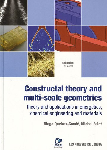 Constructal theory and multi-scale geometries: Théorie structurale et géométries multi-échelle. Procédés, énergétique et matériaux par Diogo Queiros-Condé, Michel Feidt