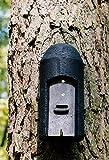 Schwegler Naturschutzprodukt Fledermaushöhle 1FD mit dreifacher Vorderwand