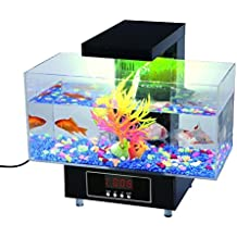 Premier acuario de escritorio (Completo del regalo para Oficina y Hogar) por Express Panda
