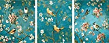 vernice per numero Pacchetto di 3 [Cornice di Legno] Dipingere con i Numeri per Adulti e Bambini Kit Apricot Fiori Aperti 16x20 inch