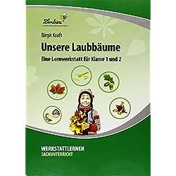 Unsere Laubbäume: Grundschule, Sachunterricht, Klasse 1-2