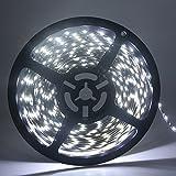 Grandview 1 X Weiß 16.4 ft/5 M LED Strip-Light flexibel 3528 300SMD Wasserdicht Licht Streifen für Auto Stage Party Weihnachten Garten Schrank Heimwerker Haushalt Dekoration ( DC-12 V)