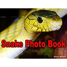 Snake Photo Book: 100 Pictures of Snakes for Children to See How This Horror Reptile Look Like (Snake Books for Kids)