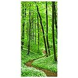 Apalis Raumteiler Romantischer Waldweg 250x120cm inkl. transparenter Halterung