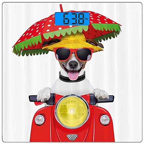 Precision Digital Körpergewicht Waage Tier Ultra Slim gehärtetes Glas Personenwaage Genaue Gewichtsmessungen, Hund mit Hut und Sonnenbrille Motorrad fahren unter einem Regenschirm Lustiges Urlaubsbild