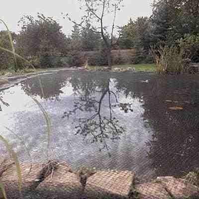 Netz über Teich