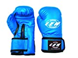 #4: LEW Club Boxing Gloves Blue - 14OZ