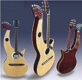 FidgetGear Factory Store 21 Saiten Harp Gitarre Akustik E-Gitarre Doppelhals Gigbag