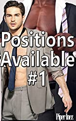 Positions Available #1 (Gay, Str8, Curious, MMf) (English Edition)