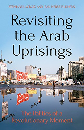 Revisiting the Arab Uprisings: The Politics of a Revolutionary Moment (Comparative Politics and International Studies)