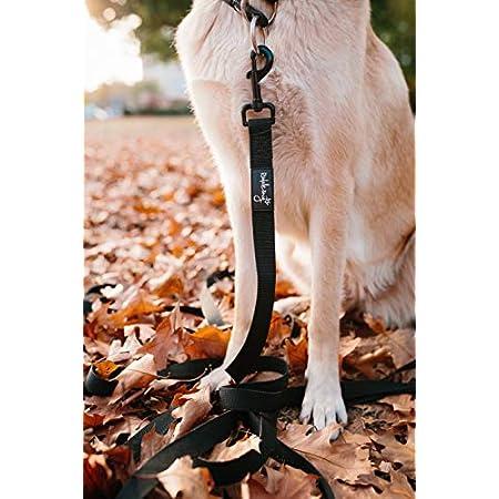 Rudelkönig Hundeleine mit reflektierenden Streifen (2,15m) – mehrfach längenverstellbar – robuste Multifunktionsleine in schwarz – hochwertige Trainingsleine
