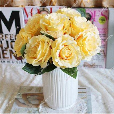 Exotique Miniature Bonsai Fleur Rose Rosas Graine Bricolage Jardin Maison Ménage et embellissant de purification d'air 110 Pcs/Sac 20