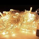 HG® 100M 500 LED Lichterketten Warmweiß Außenlichterkette Wasserdicht für Weihnachtszeit Halloween Geburtstag Außen Schaufenster