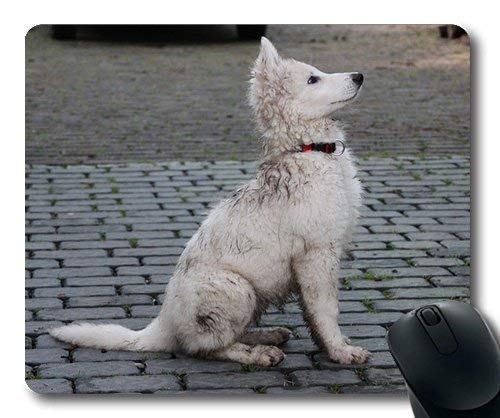 Drempad Gaming Mauspads Custom, Custom Mouse pad,Dogs Pets Garden Mouse Pads,Puppy Dog Dirty Swiss White Shepherd Dog Pet,Dogs Gaming Mouse mat