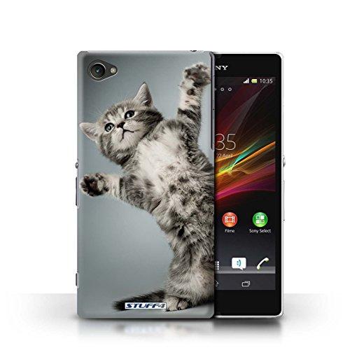 Kobalt® Imprimé Etui / Coque pour Sony Xperia Z1 Compact / Chaton Parasseux conception / Série Chatons mignons High five