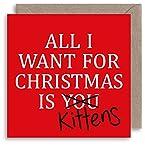 Funny Cat Lover Weihnachtskarte–All I want for Christmas Zitat–HUMOR Songtext Weihnachts Karte–Sarkastisch Witz Weihnachten–Alternative Weihnachts Karte