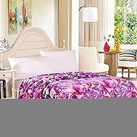 HHYWS Morbido e caldo buttare letto divano di gettare una coperta calda doppia, starring Twilight Drover,200*230 cm