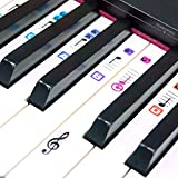 TimberRain Piano Stickers for 49 / 61 / 76 / 88 Keys, Removable and Transparent, Double Layer Coating Color Keyboard Stickers for Kids and Beginners