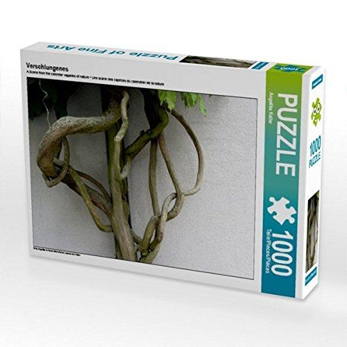 Verschlungenes 1000 Teile Puzzle quer Preisvergleich