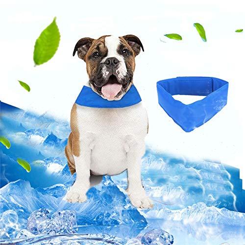 Pawaca Collar refrigerante para mascotas, Correa de perro refrigerante Cómodo Collar de...