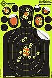 Air Pistols - Best Reviews Guide