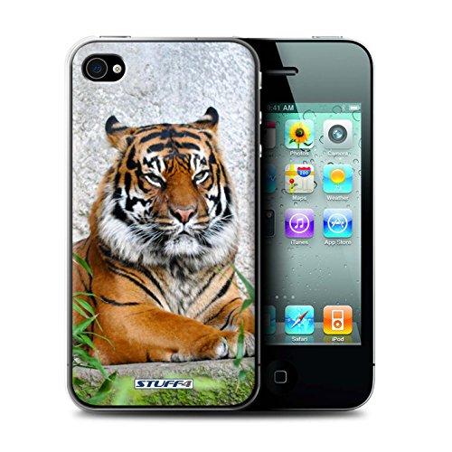 Gedruckt Schutzkoffer Schutzhüllen / Hülle für Apple iPhone 4/4S / Wolf Muster / Wilde Tiere Kollektion Tiger
