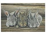 Fußmatte Kaninchen Trio