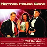 Songtexte von Hermes House Band - I Will Survive