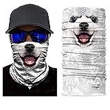 ILOVEDIY Tour de Cou Moto Tete de Mort Clown 3D Crane Cagoule Masque Multifonction Homme Halloween Deguisement (#15)
