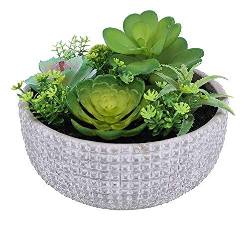 palmtree homeware, piante grasse artificiali in vaso grigio moderno strutturato, pianta decorativa realistica, per interni ed esterni, non necessita di manutenzione