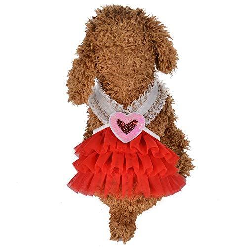 Quaan Haustier Hund Sommer Bottoming Lace Rüschen Mesh Print Kleid Kleidung Pet Cat Dress
