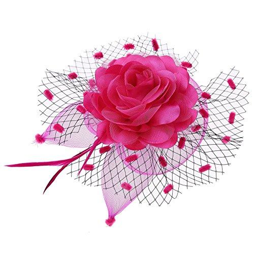 Damen Fascinator Schleier Blume Cocktail Tee Party Headwear Hochzeit Kopfschmuck (Rose (Gras Einfach Mardi Kostüme)