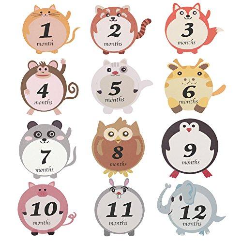 rints Baby-Bauch-Aufkleber Baby Monats Milestone Aufkleber Schwangerschafts-Wochen-Aufkleber 12st Hohe Qualität, praktisch, die Sie verdient haben ()