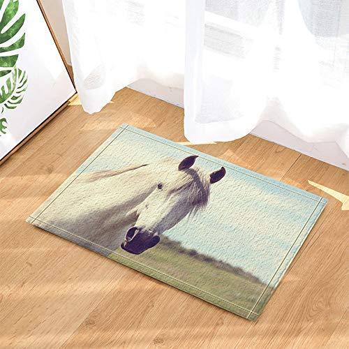 SRJ2018 Weißes Pferd mit gelben Haaren, das auf dem grünen Gras Steht Super saugfähig, Rutschfeste Matte oder Fußmatte, weich und bequem (Gras Anker)