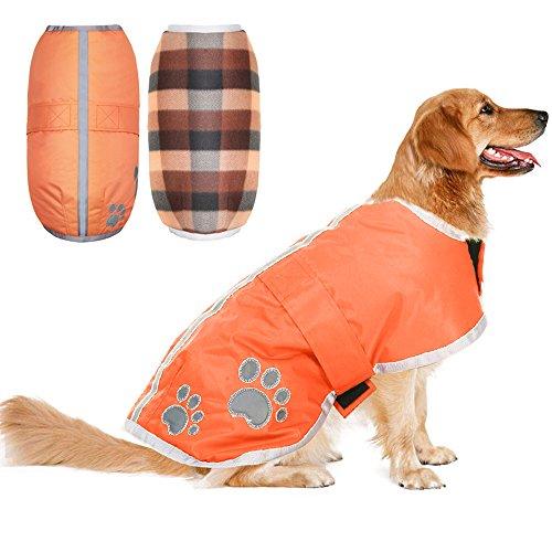 Niedliche Boxer Kostüm Hunde - PUPTECK Wendejacke für Hunde, wasserdicht, reflektierend, für große Hunde, M, Orange