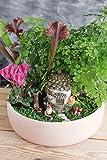 Mini Garten FAIRY-SET