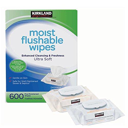 Kirkland Signature 600Pack Hypoallergen alkoholfrei Ultra Weich Feucht herunterspülbarer Reinigungstücher (Tote Bubbles Tasche)