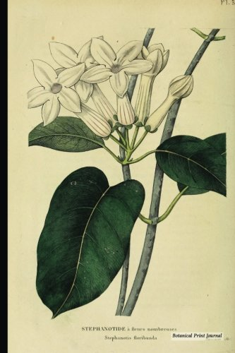 "Botanical Print Journal: stephanotis floribunda, 6"" x 9"" Vintage Botanical Flower Print Journal - [Lined Journal]"