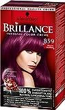 Brillance Intensiv-Color-Creme, 859 Violette Wildseide, 3er Pack (3 x 1 Stück)