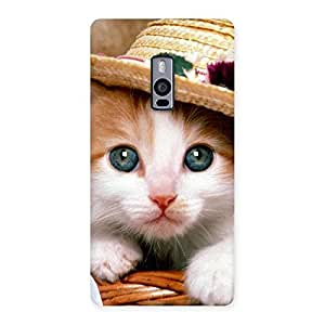 Special Cute Kitty Hat Multicolor Back Case Cover for OnePlus Two