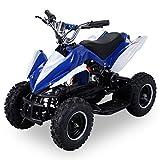 Actionbikes Motors Mini Elektro Kinder Racer 800 Watt ATV Pocket Quad Kinderquad Kinderfahrzeug… (Blau/Weiß)